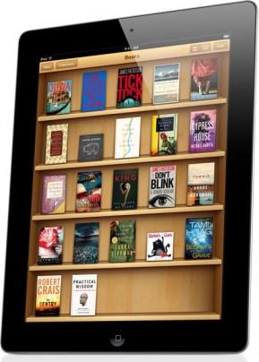 Erin Bowman Building A Bookshelf