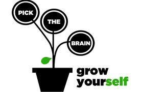 Pick the Brain Logo