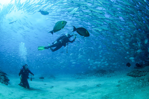 4 Reasons Why Los Cabos Should Be The Next Place You Visit