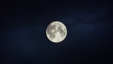 Photo of SUPER MOON – AN EMAIL FROM A PEEPER