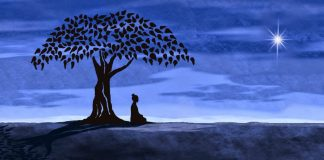 Person introspecting and experiencing spiritual awakening alone under tree