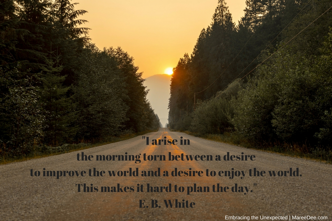 """""""I arise in the morning torn between a desire to improve the world and a desire to enjoy the world. This makes it hard to plan the day."""" E. B. White"""