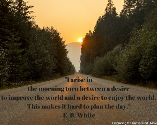 """I arise in the morning torn between a desire to improve the world and a desire to enjoy the world. This makes it hard to plan the day."" E. B. White"