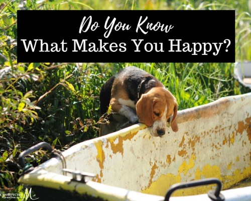 Do you know what makes you happy? Maybe you have forgotten or just don't do enough of it on a daily basis. If you are anything like me, more times than not, I choose productivity over the things that make me happy. It is not all wrong but if you tip the scales too far one way it just might be.