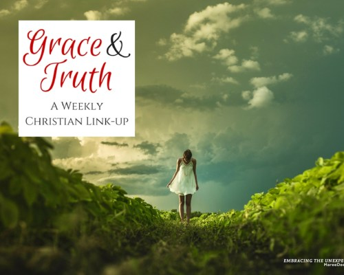 Grace & Truth Link-Up - Do you need a little hope when you feel like a failure? It is hard to stand back up once we have fallen. Failing can cause us to crawl back into our comfort zone and feed our insecurities. What if there is a better way? - Featured Post by Misty Phillip.
