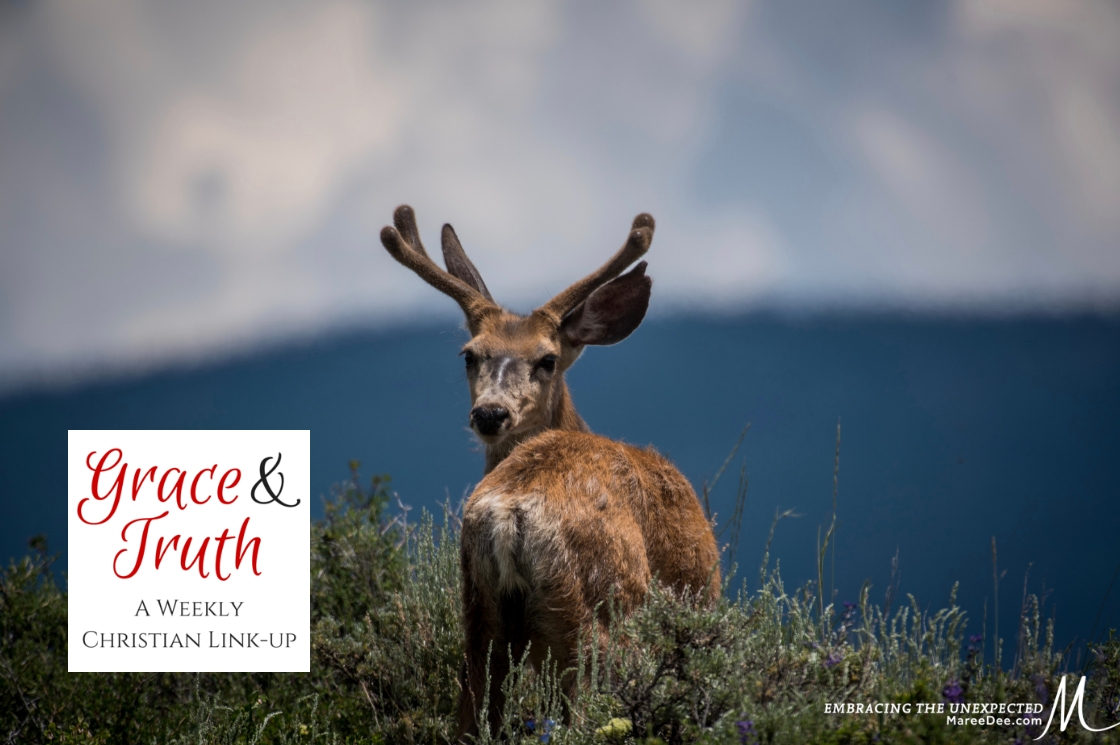 Is It Ever Good to Look Back? - Grace & Truth Link-Up