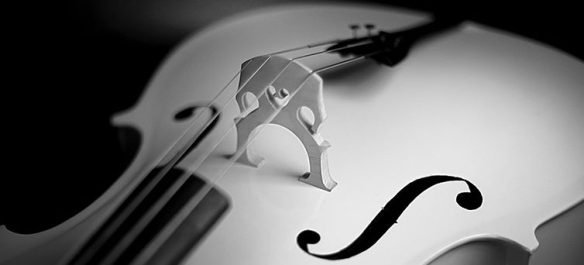 violoncelle 800