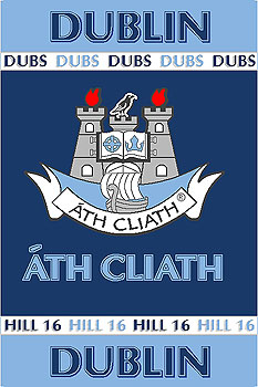 Leinster County GAA Rugs  Dublin GAA County Crest  Irish County Rug