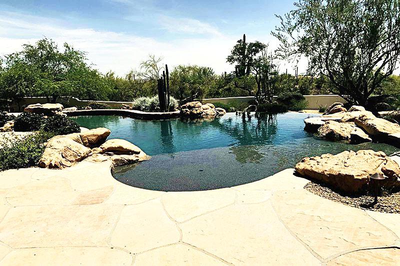 backyard pool desert landscape design ruckman
