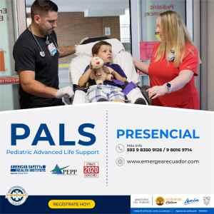 PALS_p-01-min
