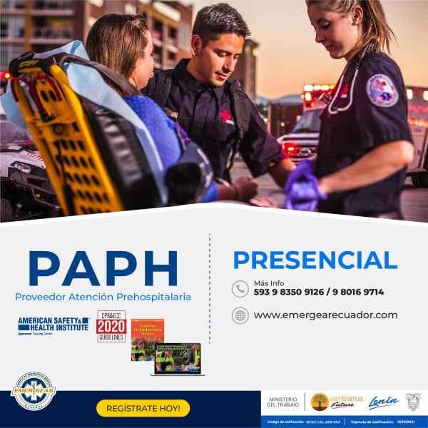 PAP_p-01-min