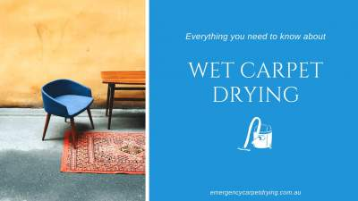 Everything you need to know about Wet Carpet Drying