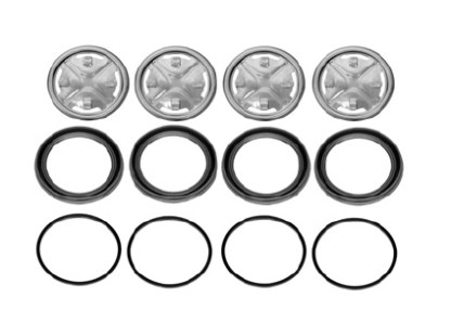 Caliper Seal Kit 87039549 Steel Piston