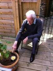 Feeding the Plants - 2013