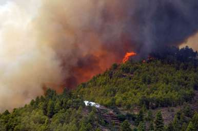 Vilaflor a fost evacuat marți seara. Încă nu a ars nicio casă. Foto: canarias3.es