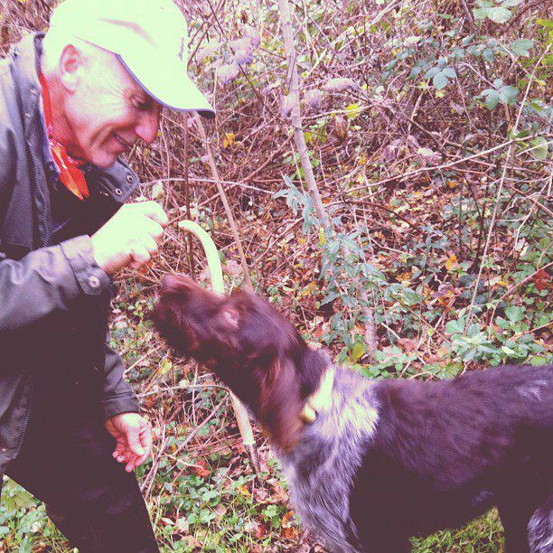 Hunting truffles in Italy