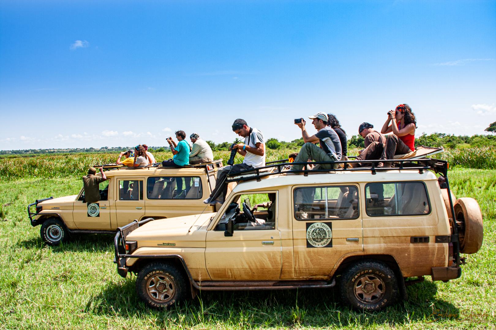 Viajeros del viaje fotográfico a Uganda realizando fotografías encima de los vehículos.