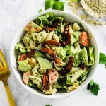 Hemp Ranch Vegan Pasta Salad