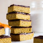 Chocolate Pumpkin Protein Bars (vegan & gluten-free)