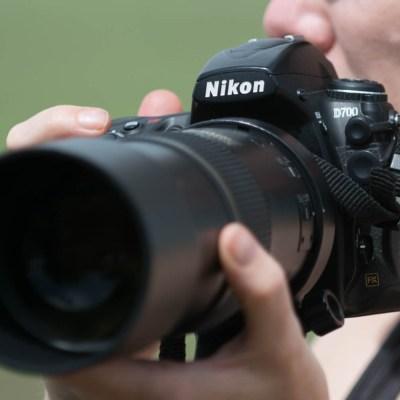 Stages sur-mesure : prise de vue, analyse d'images, post-traitement sur Lightroom…
