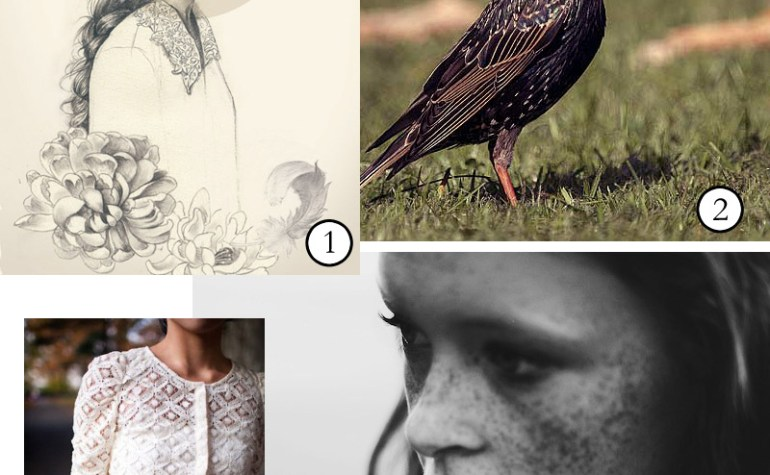 Image Inspiration: Starlings and Freckles