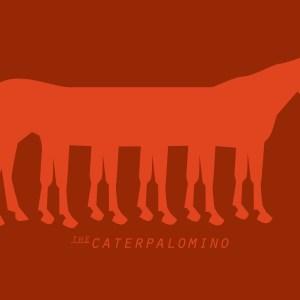 Caterpalomino 04
