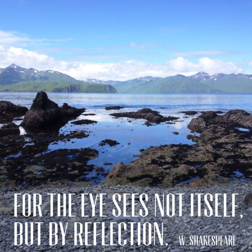 For the eye sees not itself but by reflection. William Shakespeare