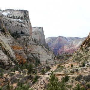 Zion, Tuscon And Grand Canyon March 2016 13