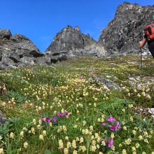 Backpacking In Hatcher Pass