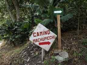 Hiking to Machu Picchu