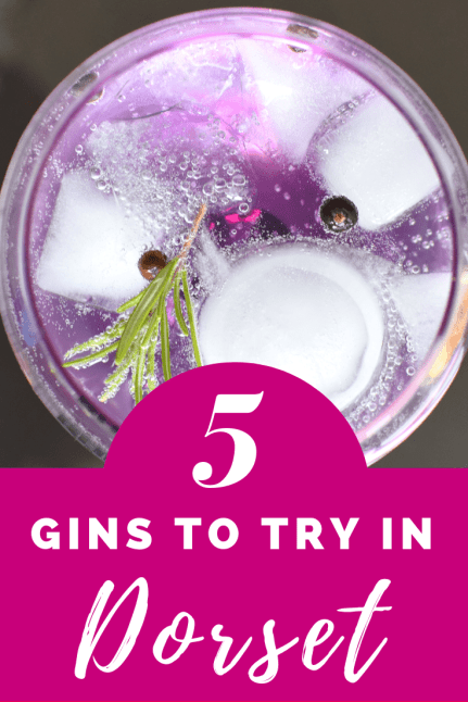 5 of the best gins to try in Dorset England