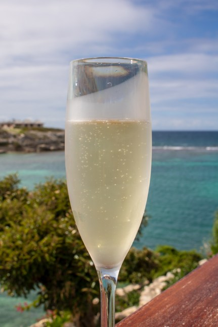 champagne at Hammock Cove Resort