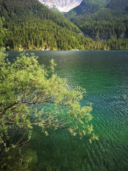 Tovel Lake - Trentino Italy