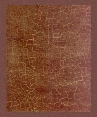 Faux Painting Finish - Crackle 7