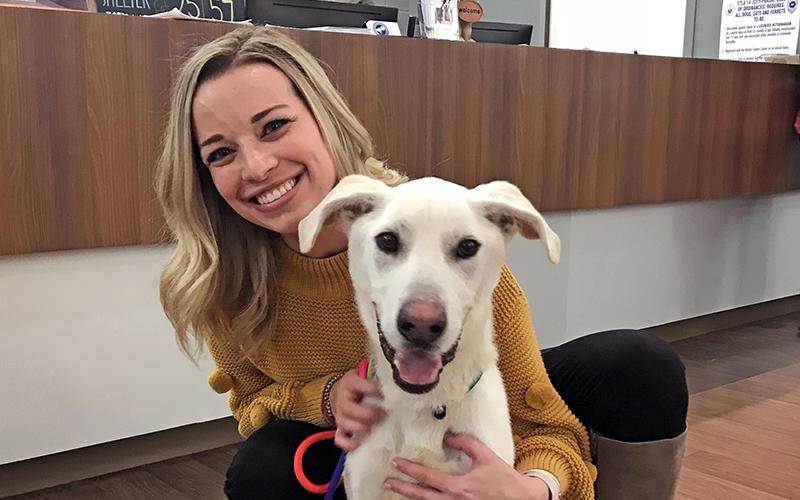 Five Ways You Can Help Companion Animal Alliance