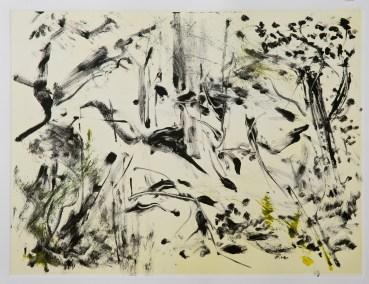 "No. 17-3, Part 3 of Landscape Triptych, Monotype on Rives BFK, 22"" x 30"", 2010"