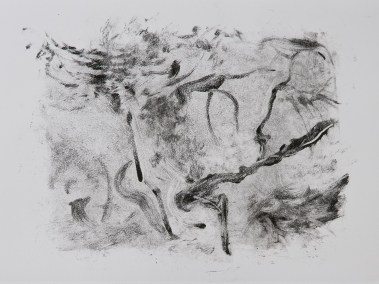 """No. 8, Monotype on Canson Watercolor Paper, 10"""" x 15"""", 2010"""