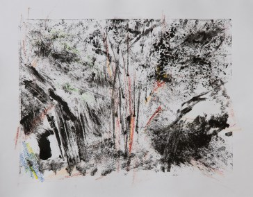 """No. 4, Monotype on Canson Watercolor Paper, 16"""" x 20"""", 2010"""