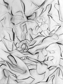 "No. 15, Still Life, Charcoal on Paper, 24"" x 18"", 2011"