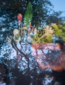 No. 20, Reverie, Landscape Diptych