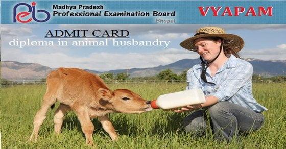 diploma in animal husbandry