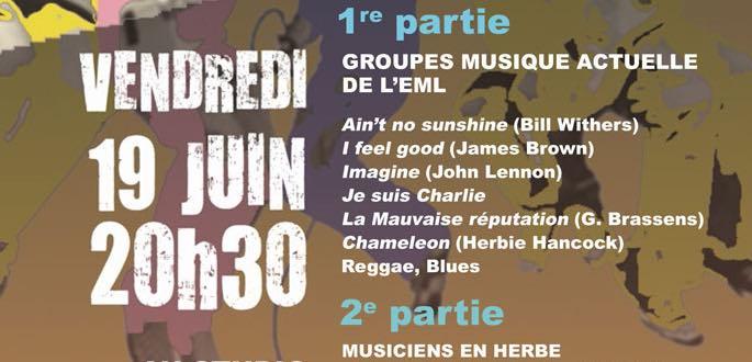 Concert Des Groupes De Musiques Actuelles