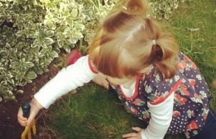 Six Creative Garden Activities for Children This Half Term