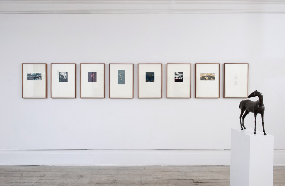 Installation view of Editions, 2015