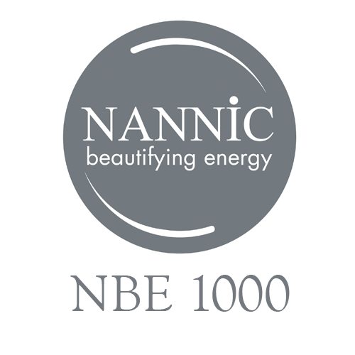 NBE 1000