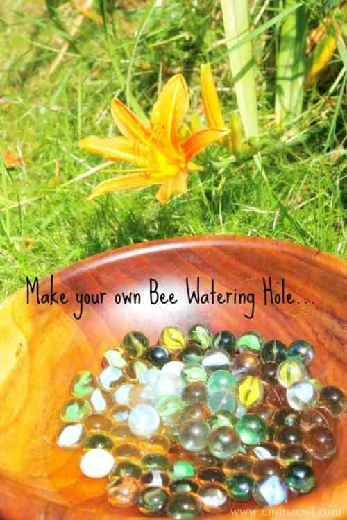 Make your own Watering Hole for Bees. They get thirst too