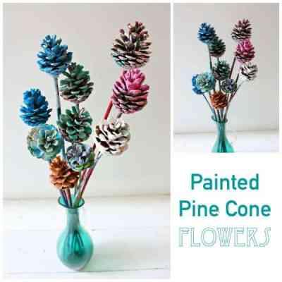 Beautiful Painted Pine Cone Flowers