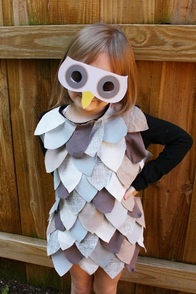 Halloween Owl Costume