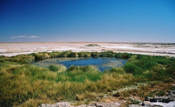 groundwater-04-single-projects-image-dimensions-570x350