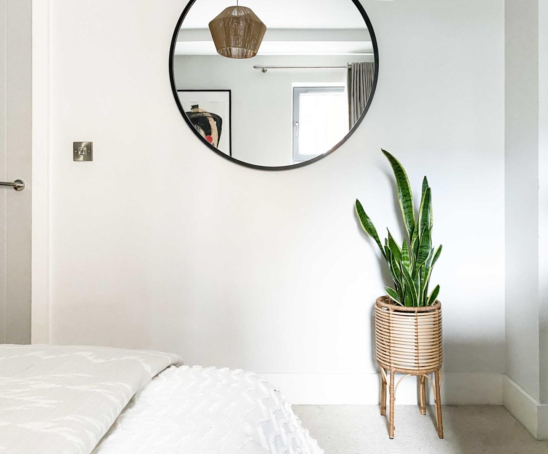 Snake plant and round black modern mirror Umbra hub
